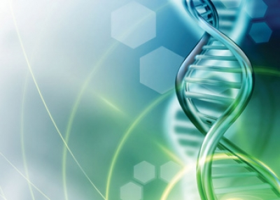 Genetic Testing for Truly Individualized Health Care